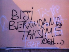 occupyGezi (20)