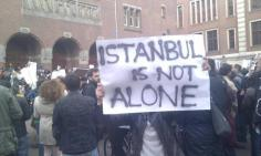 occupyGezi (96)